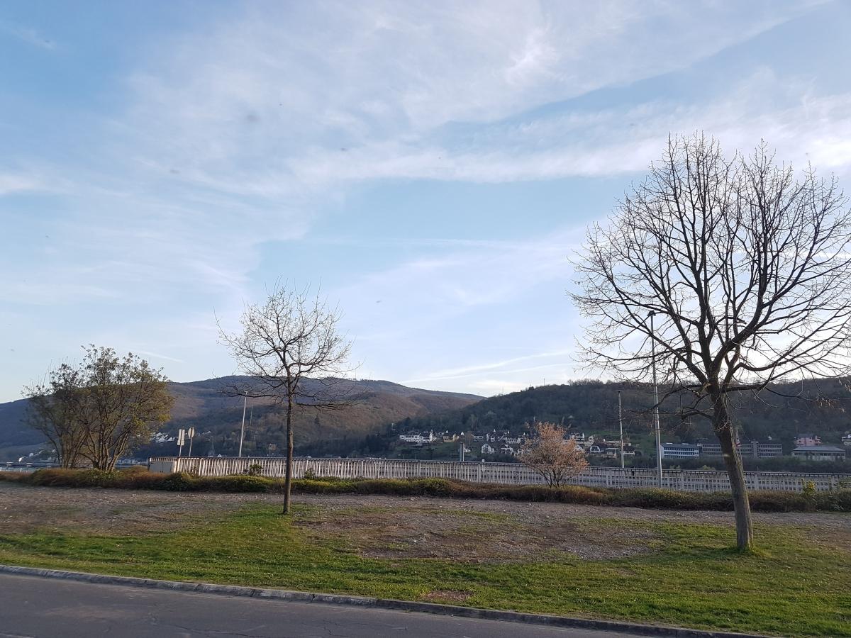 Alte B42 mit Blick auf den Rhein